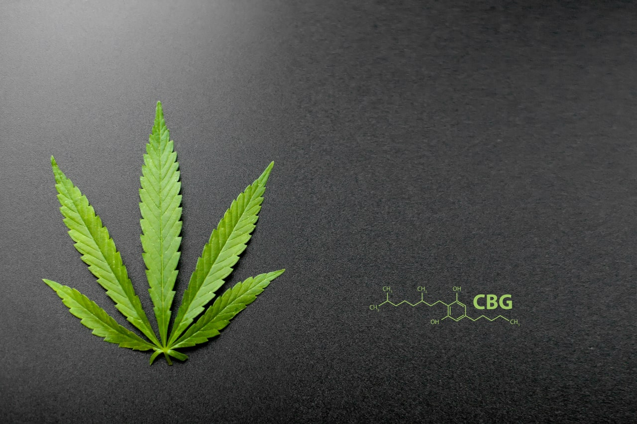 10 Amazing Benefits of CBG and why it's the 'mother'